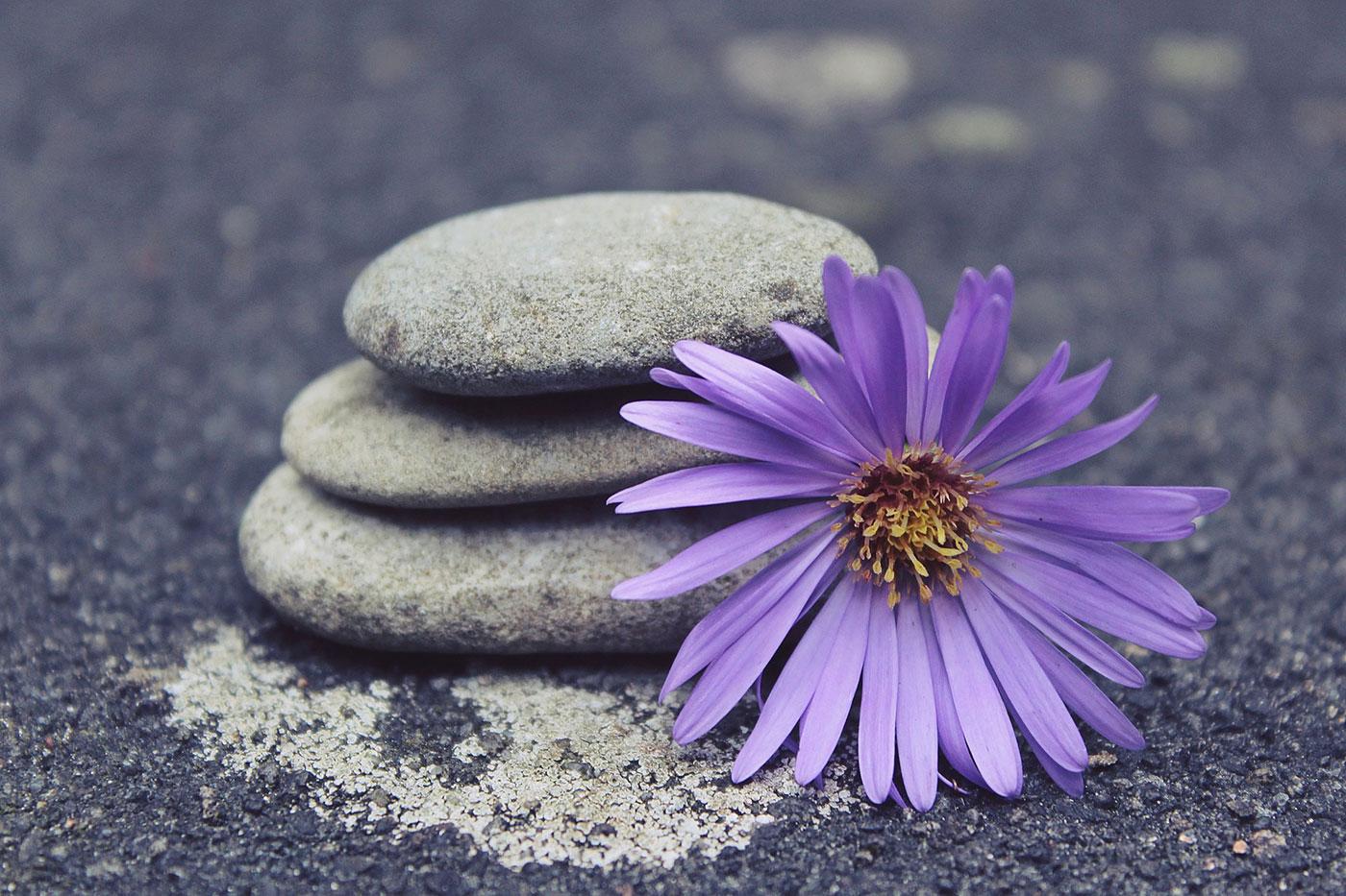 Zur Ruhe kommen durch Hatha Yoga